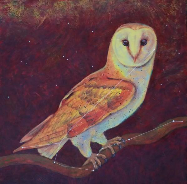 丽莎Bohnwagner的Astro Owl(星座Noctua)