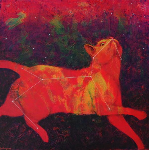 宇宙小猫(Constellation Felis)由Lisa Bohnwagner