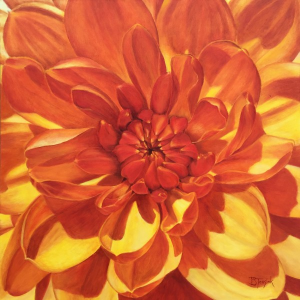 Heart of Fire by Barbara Teusink