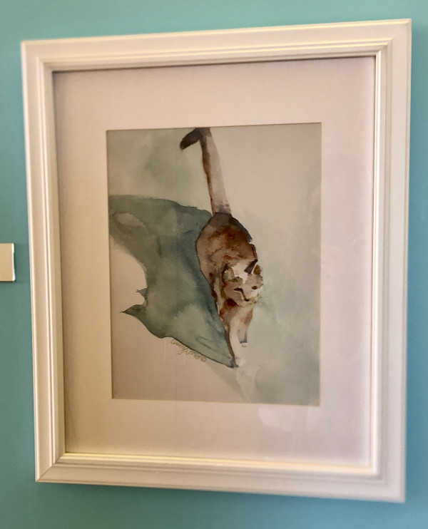 Shadow Cat by Sally Evans