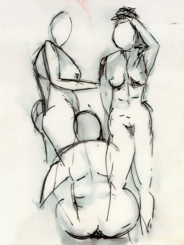 Hips Don't Lie by Rebecca Zdybel