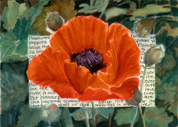 Pleasures are Like Poppies by Rebecca Zdybel