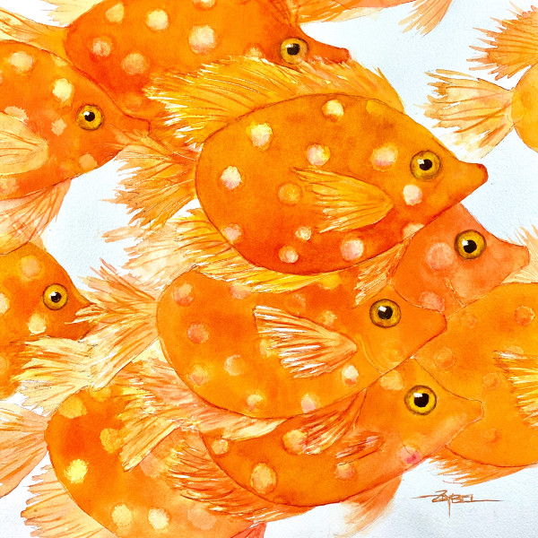 Orange Crush Two by Rebecca Zdybel