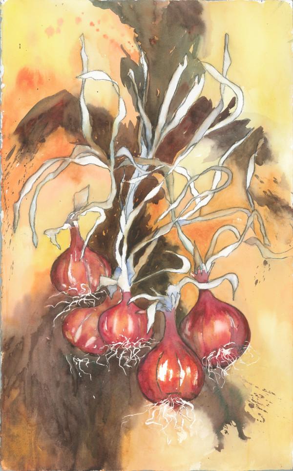 Harvest by Rebecca Zdybel