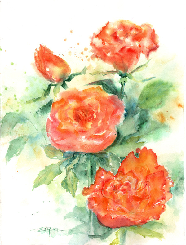 Apricot Roses by Rebecca Zdybel