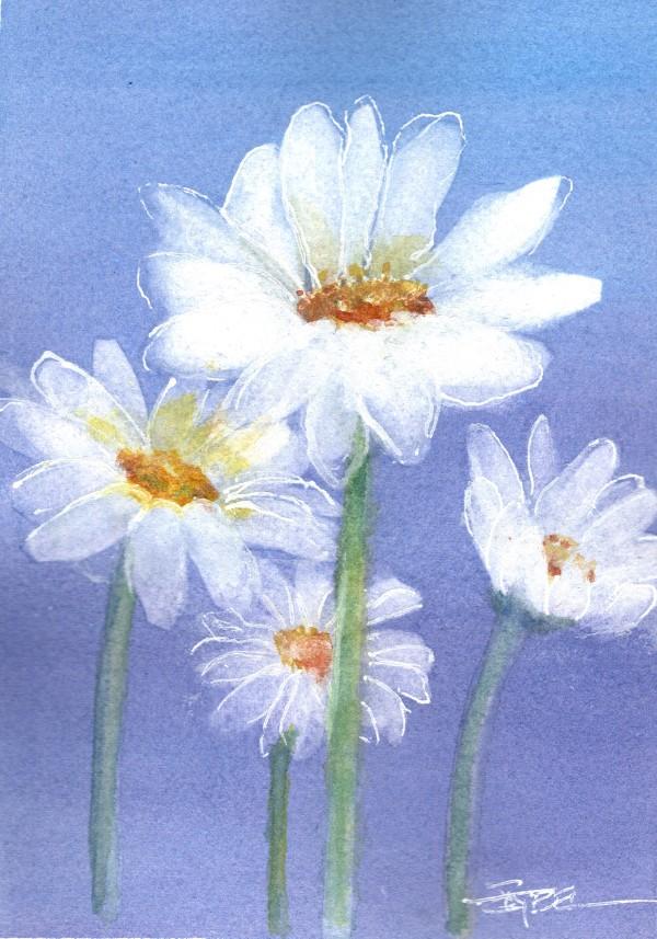 Daisy Chain by Rebecca Zdybel