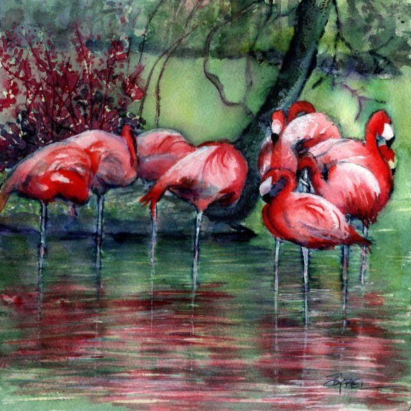 Flamingo Cove by Rebecca Zdybel