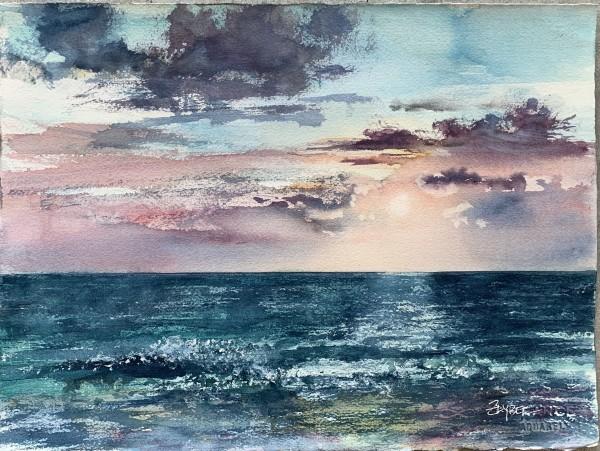 Sunset Study - Manasota Key by Rebecca Zdybel