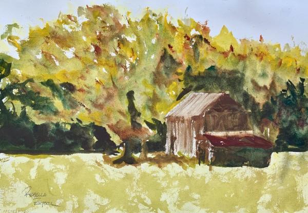 Barn Study by Rebecca Zdybel