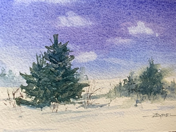 Evergreens in Snow by Rebecca Zdybel