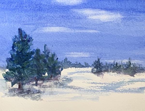 Winter Evergreens by Rebecca Zdybel
