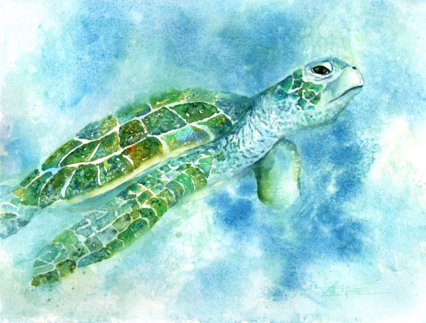Turtle Two Ways Part One by Rebecca Zdybel