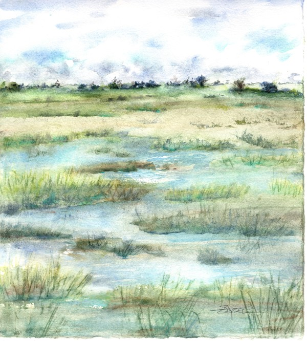 Mellow Marsh by Rebecca Zdybel