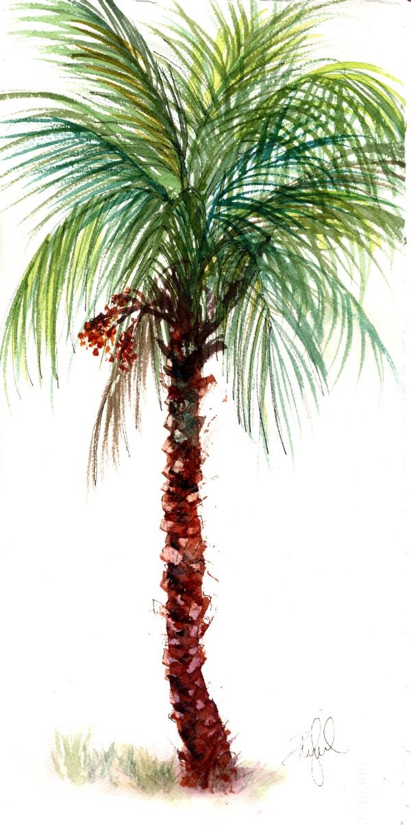 Pretty Little Date Palm by Rebecca Zdybel
