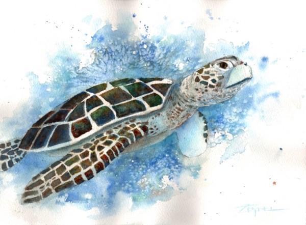 Turtle Daze 2 by Rebecca Zdybel