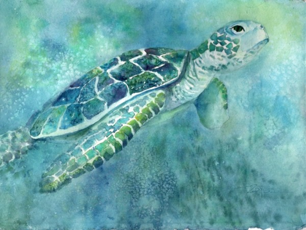 Turtle Daze 3 by Rebecca Zdybel