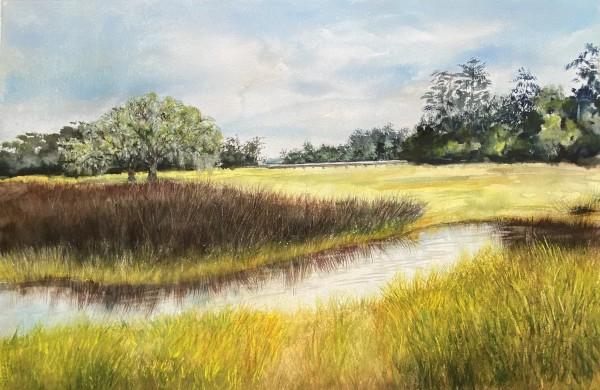 Lowcountry Landscape by Rebecca Zdybel