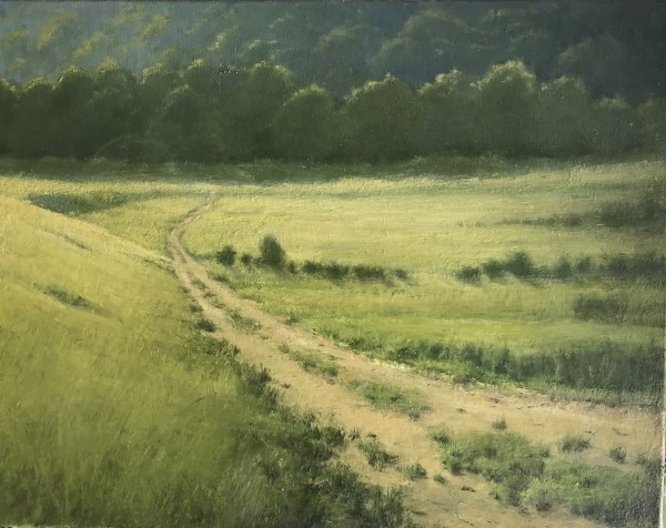 Lower Road ( on the Old Rickey Farm) by susan hope fogel