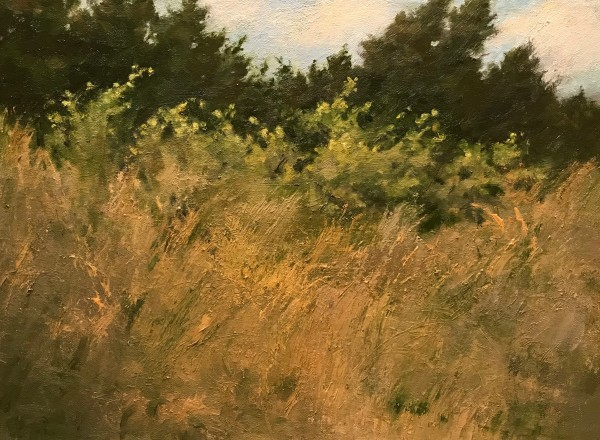 Dune Grasses by susan hope fogel