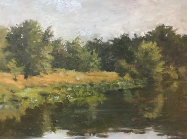 Wallkill River Refuge by susan hope fogel