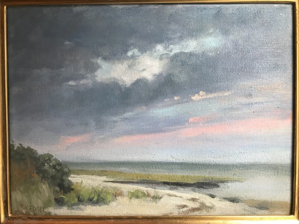 Beach Skies by susan hope fogel