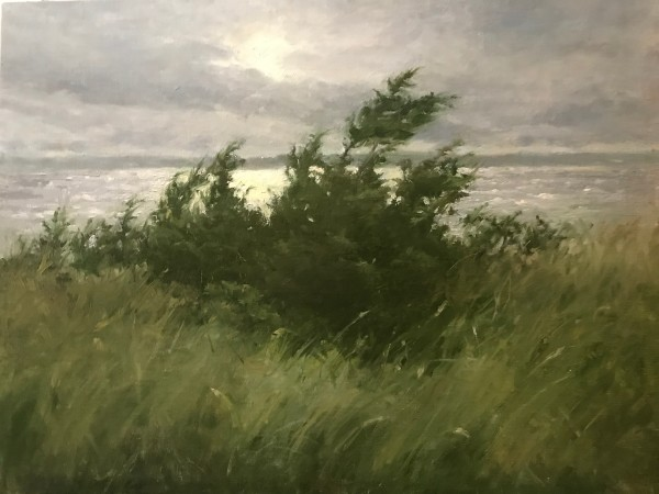 Breezy Morning by susan hope fogel