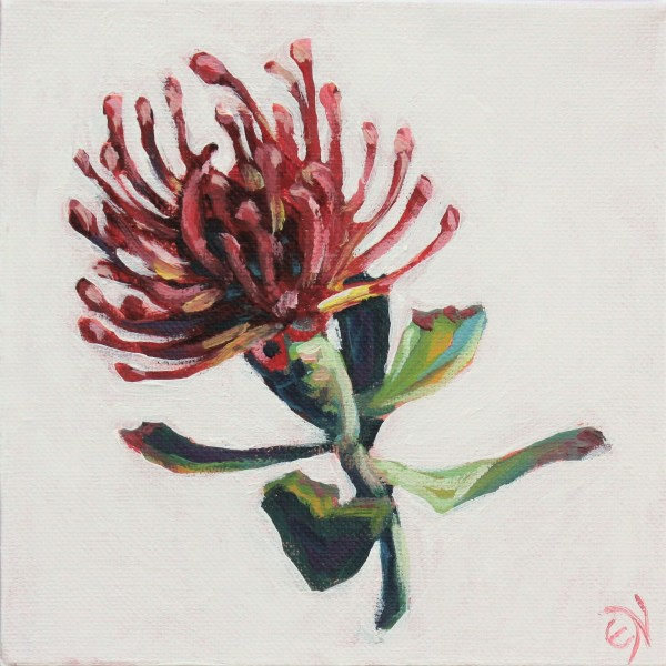 Red Protea by Eileen Noyer