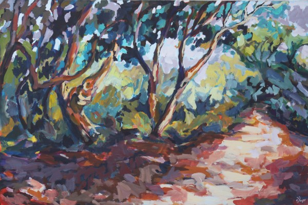 A Walk Under The Gum Trees by Eileen Noyer