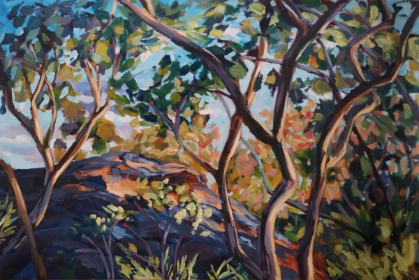 Dance of the Gum Trees by Eileen Noyer