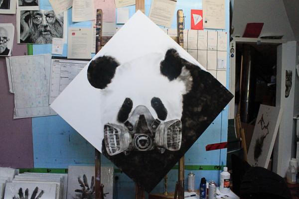Pending Panda (masked Panda) by Steven Spazuk