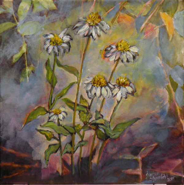 Cone Flowers by Sharron Schoenfeld