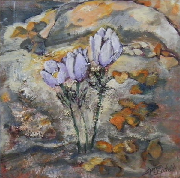 Crocus by Sharron Schoenfeld