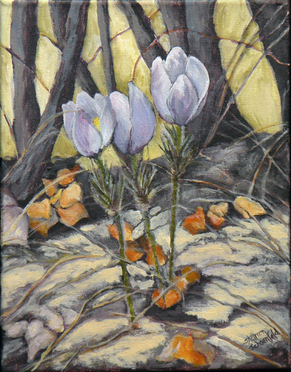 Crocus 2 by Sharron Schoenfeld