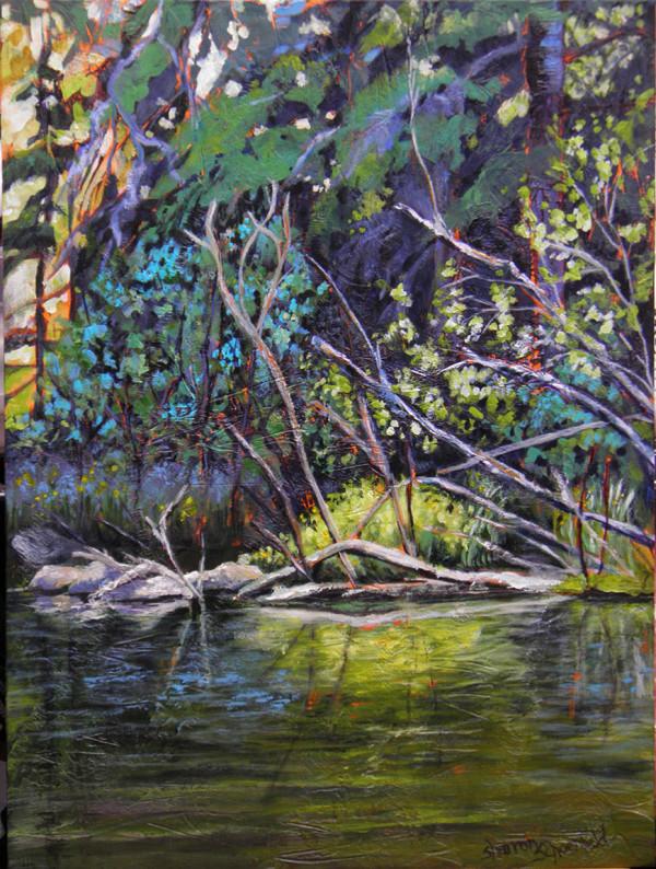 Hayes Lake Shoreline by Sharron Schoenfeld