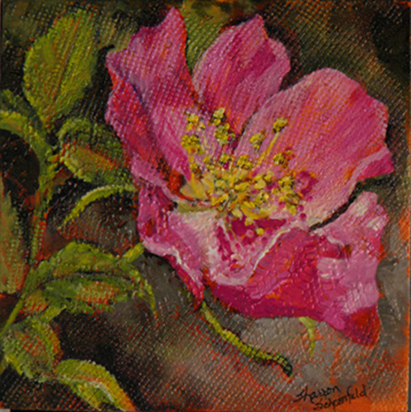 Wild Rose by Sharron Schoenfeld