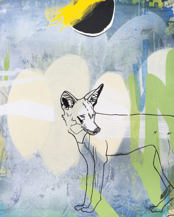COYOTE by Laura Letchinger