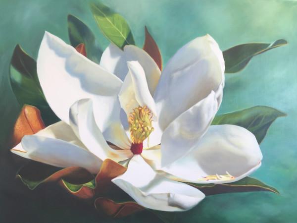 Sentimental Magnolia Commission by Anne-Marie Zanetti