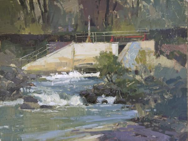 Graffiti Dam - Rio Grande River, Los Luceros, New Mexico by Lyn Boyer