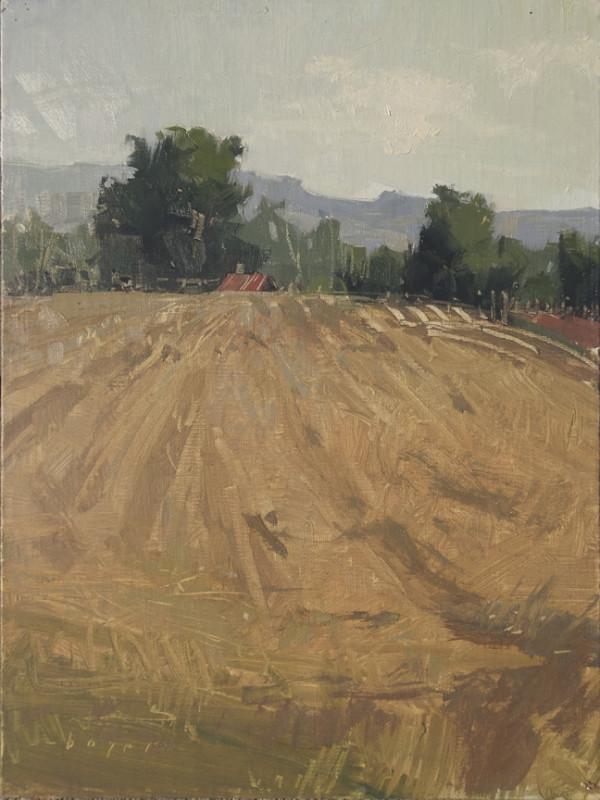 Field at Rest - Leelanau County, Michigan by Lyn Boyer