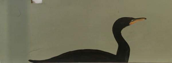 Cormorant 2 by Marston Clough