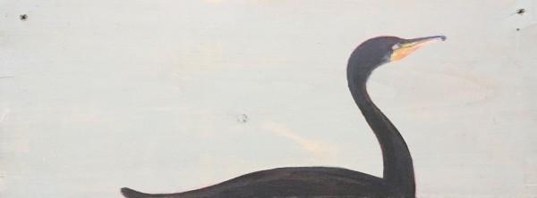 Cormorant 3 by Marston Clough