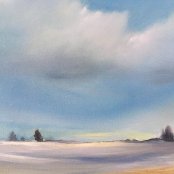 cedar field in winter by Marston Clough