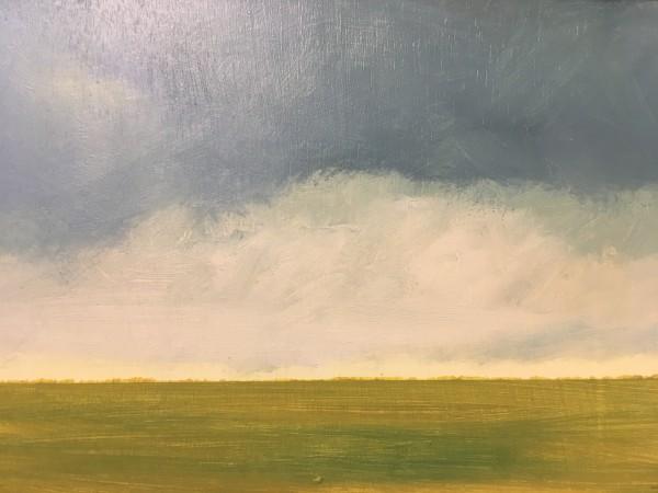 Vineyard plains by Marston Clough