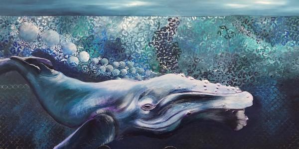 Whale place by Amanda Rennie