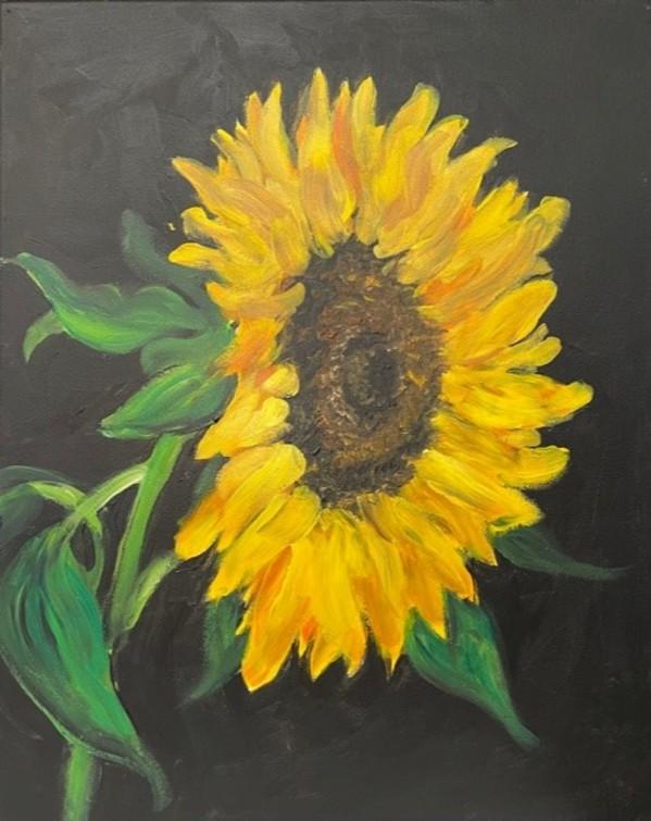 Sunflower by Shanon Bradburn