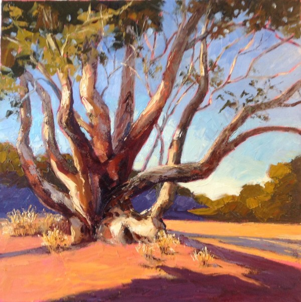 River Red Gum by Fran Garrett