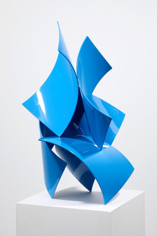 Bluebird by Matt Devine
