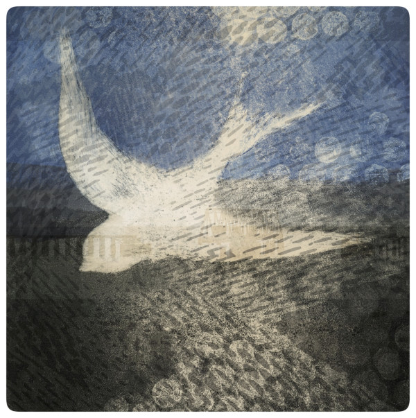 Night flight by Clare Winslow