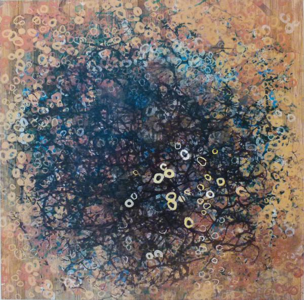 Web,Dark by Clare Winslow