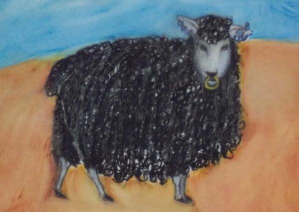 Black Sheep by KJ Bateman